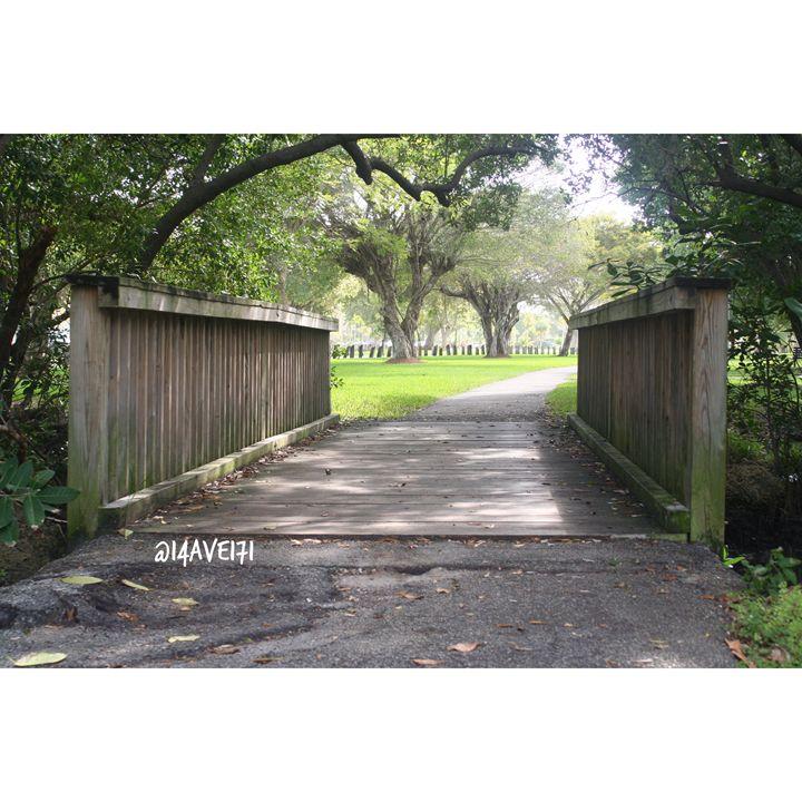 Hidden Path - Nature