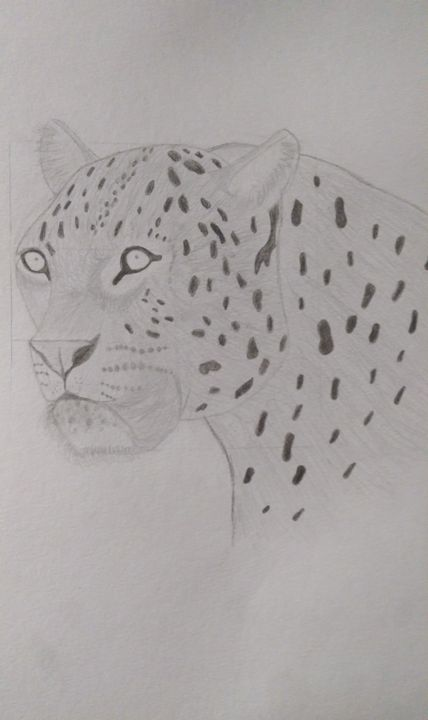 Snow Leopard - Deisy Perez