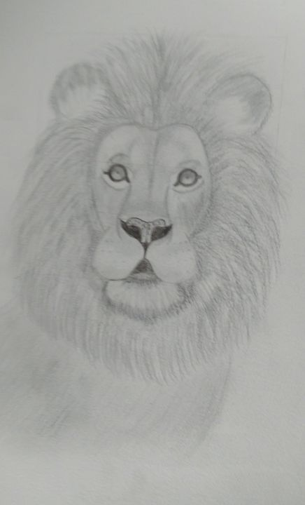 Lion - Deisy Perez