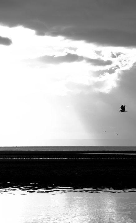 Swansea Bay 7 - Brian Raggatt