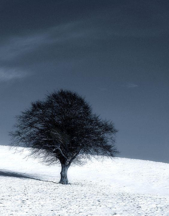 Left out in the cold - Brian Raggatt