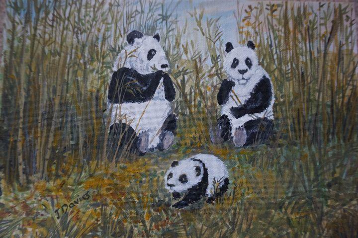 Panda Family - Artist Janet Davies
