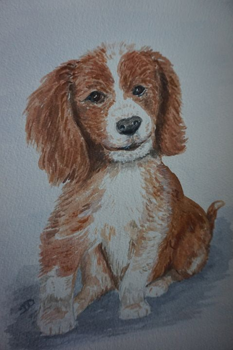 Perfect Puppy - Artist Janet Davies