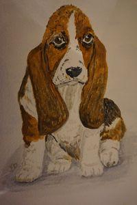 Basset Hound - Artist Janet Davies