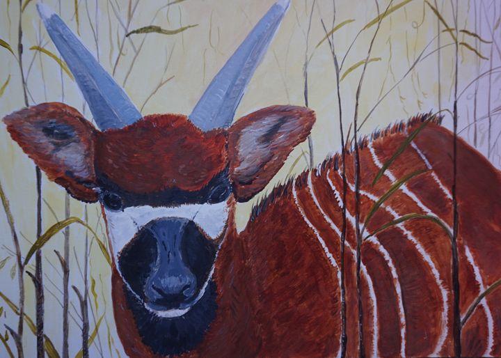 Young Bongo Antelope - Artist Janet Davies