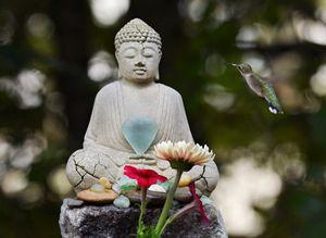 Buddha and Buddy