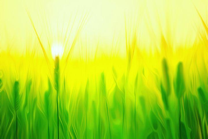 Green Grass - Defendus