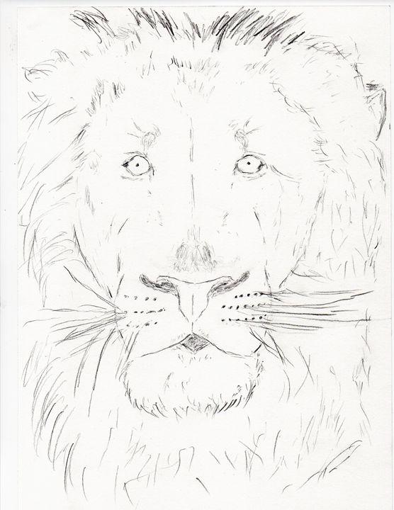 Lion - DYDM