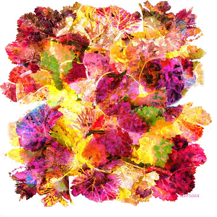 Flowers - Gersoza