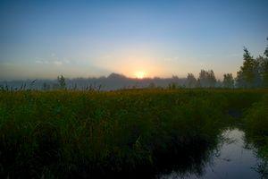 Sunrise Behind Forest Over Grassy