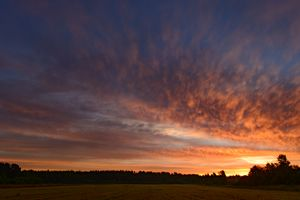 dawn sky over a green  field