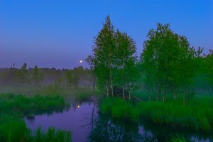 White moon night on the forest river