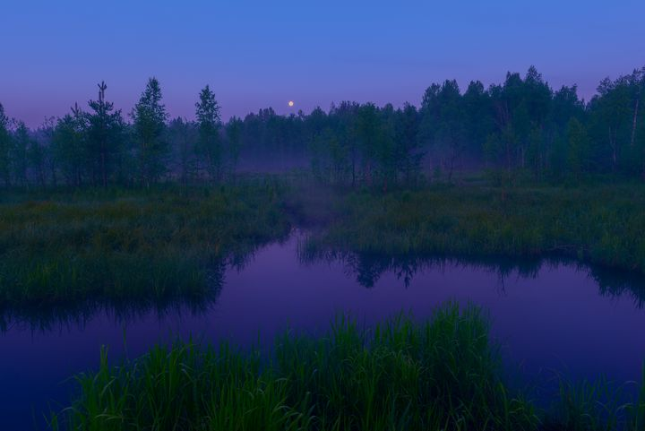 Moonlit Night on the forest river - yarvin13