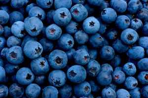 Blueberry berry fruit background