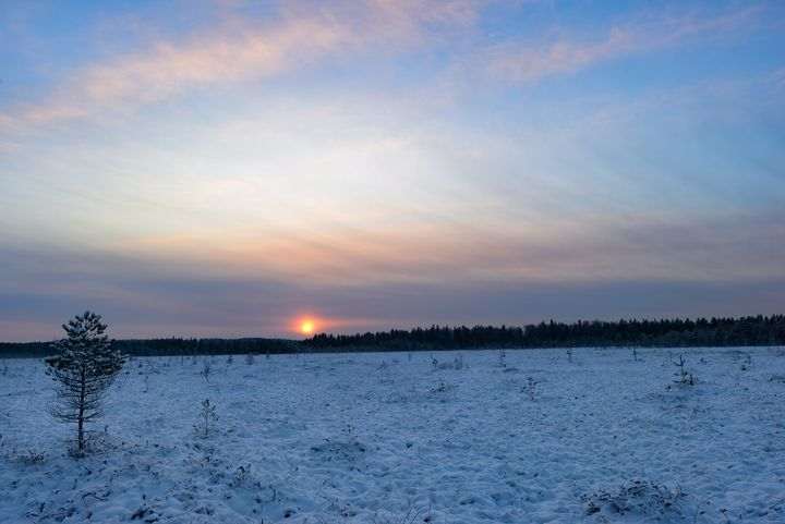Sunrise in the sky over a snow swamp - yarvin13