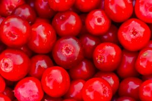 Lingonberry berry fruit background