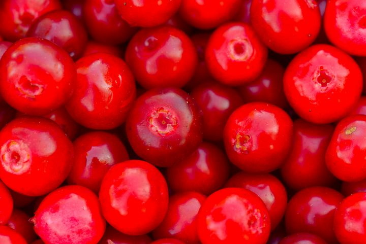 Lingonberry berry fruit background - yarvin13