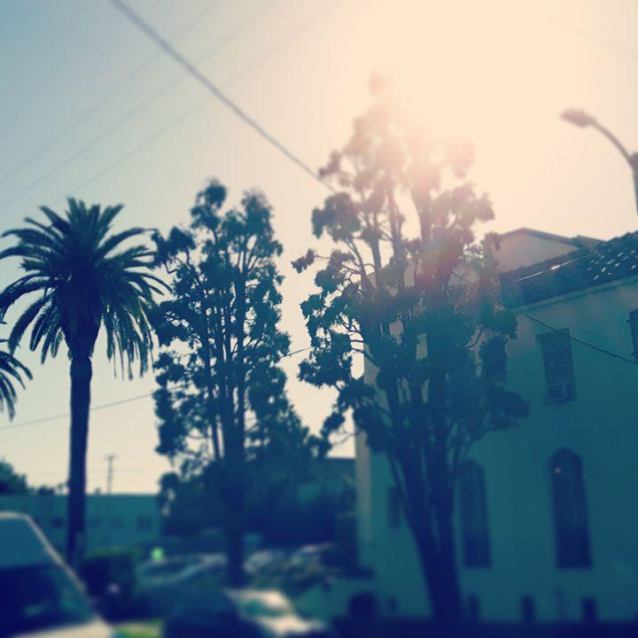 Sunlight city - Argonel