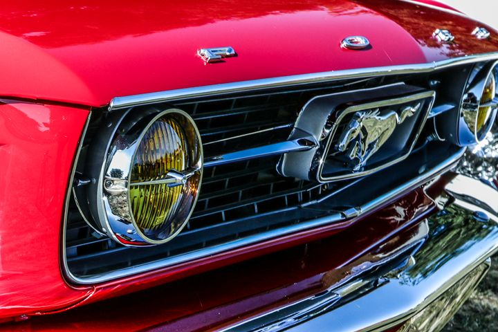 Mustang - TWT Photography