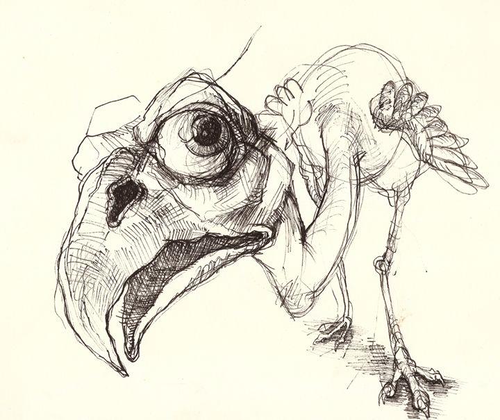 Birdosaurus - Venneberg