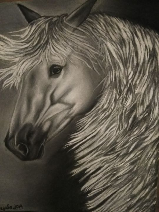 Charcoal horse art - Original art by Angela