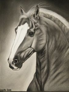 horse charcoal art