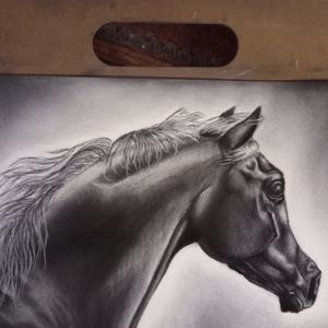 Horse charcoal art drawing