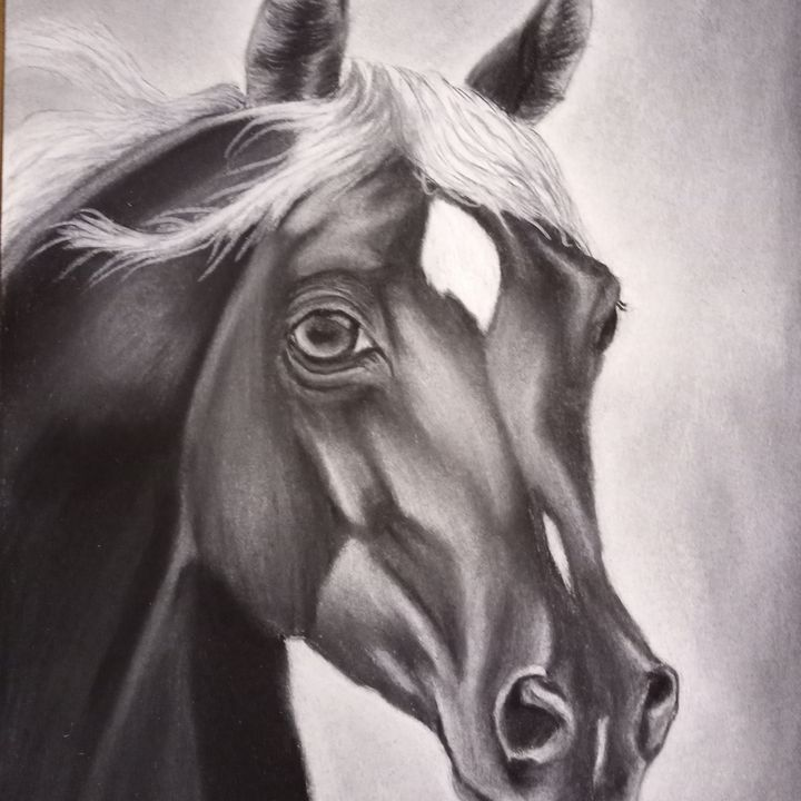 Horse charcoal art drawing - Original art by Angela