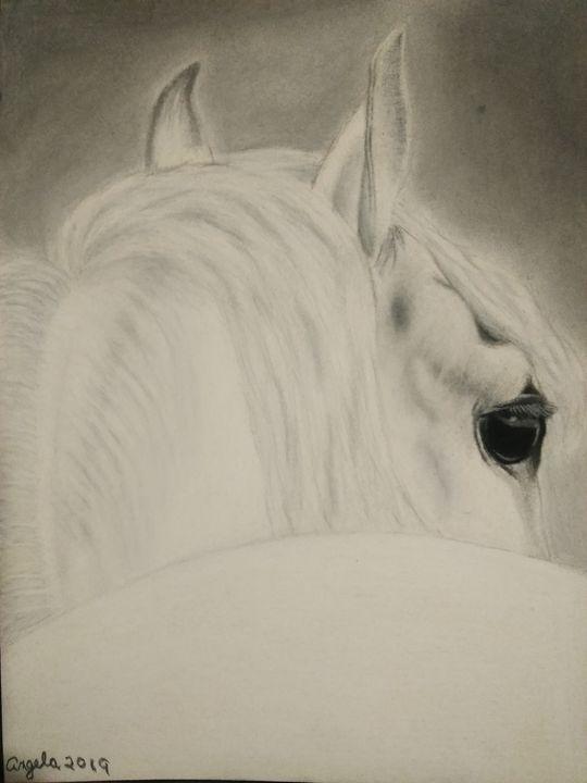 White horse charcoal art drawing - Original art by Angela