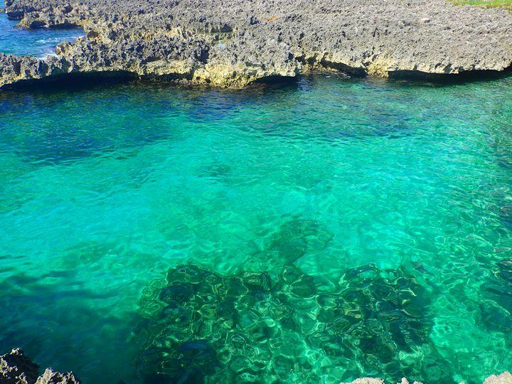 Green Cove - francine mabie