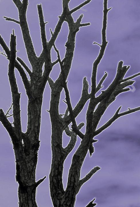 Glow Tree II - francine mabie
