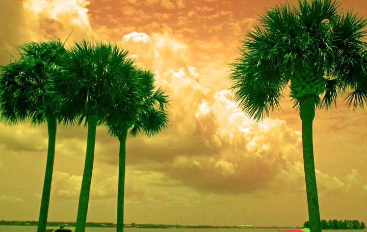 Clouds of orange and palms of green - francine mabie