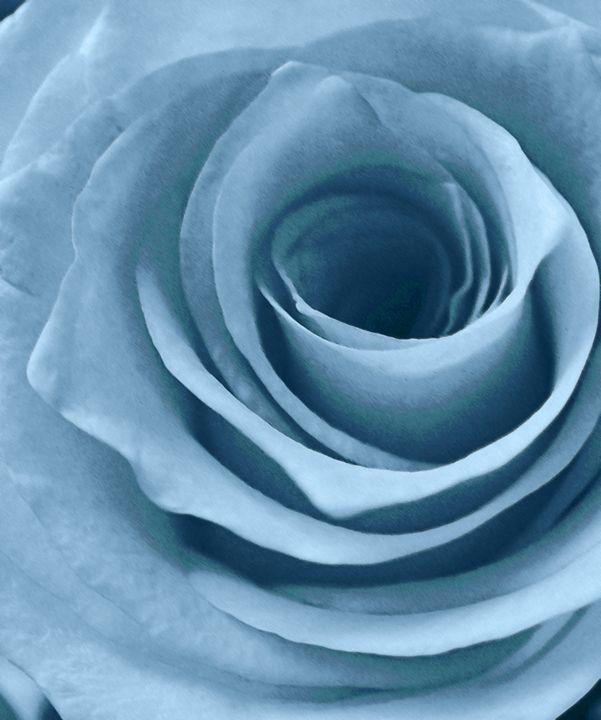 Lopez Rose - francine mabie