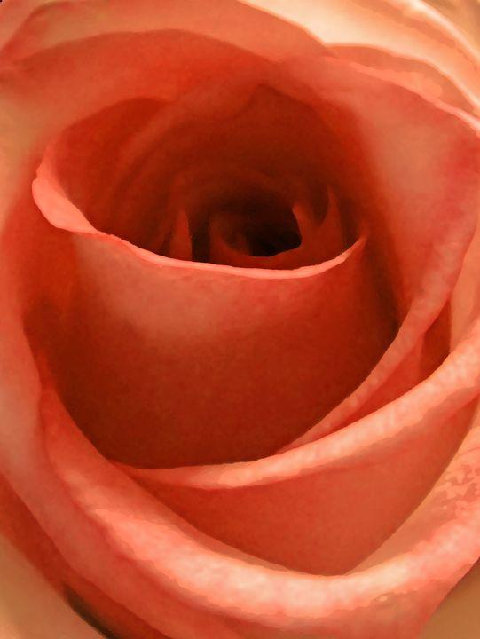 Sweet Orange Cocca Rose - francine mabie