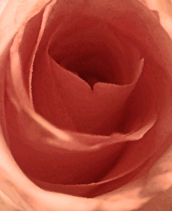 Painted Orange Rose - francine mabie