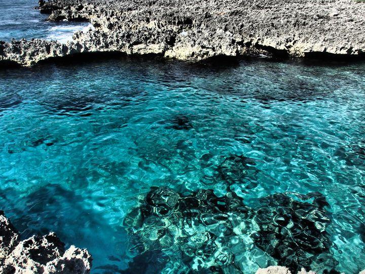 Blue Cove - francine mabie