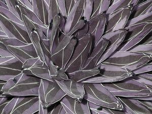 Muted Cactus