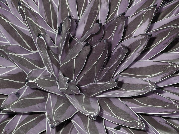 Muted Cactus - francine mabie