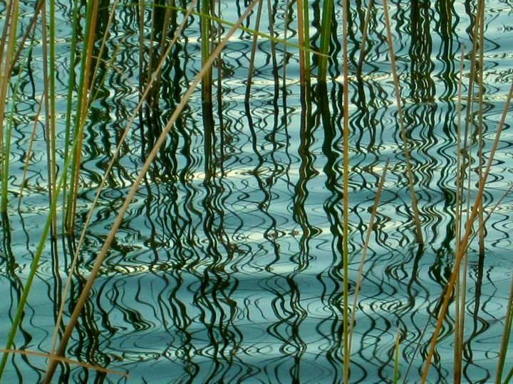 Reflections I - francine mabie
