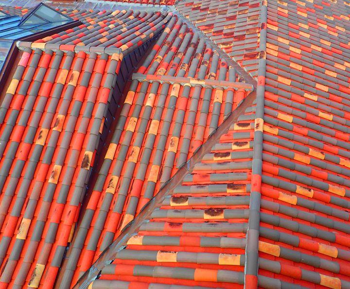 The Tile Roof I - francine mabie