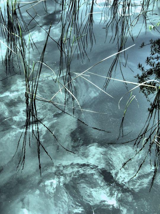 Silver Blu Waters - francine mabie