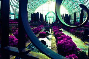 The Wrought Iron Gardens
