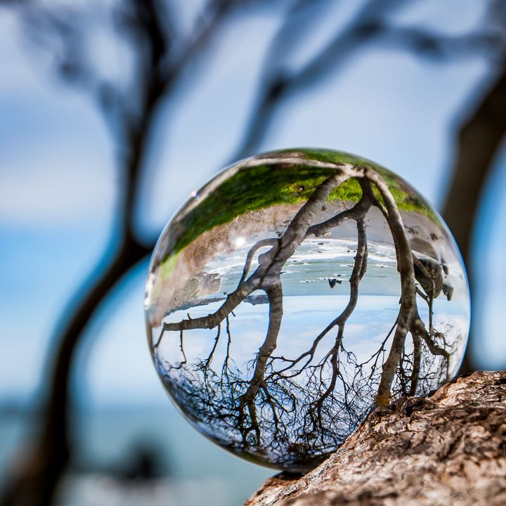 Cliff Lensball - Caleb French Photography