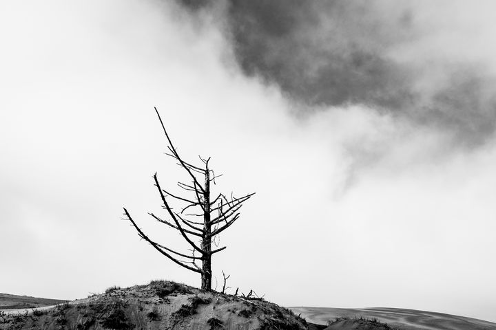 Death on the Dunes Series - Caleb French Photography