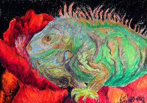 Iguana and Poppy