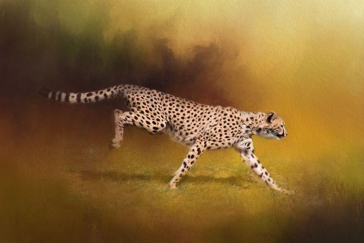 Cheetah Running - Sharon McConnell