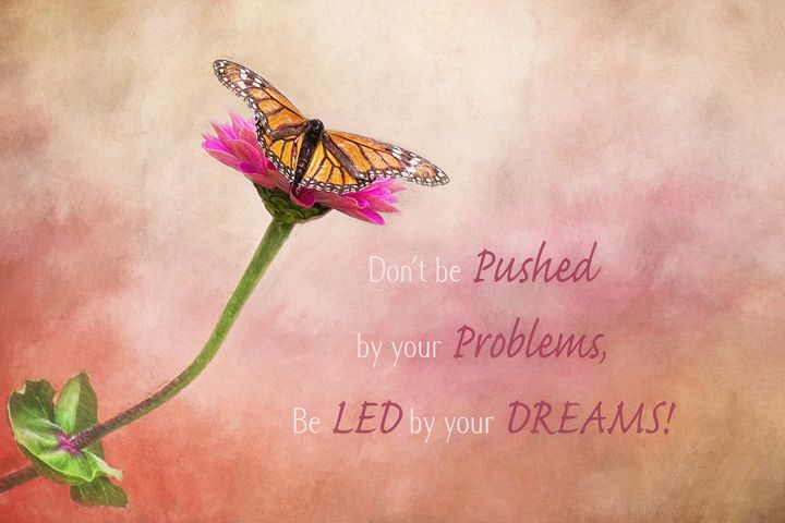 Be Led By Your Dreams - Sharon McConnell