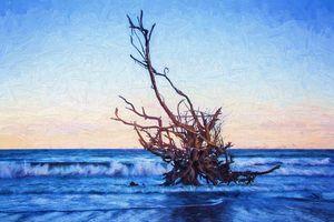 Driftwood At Dusk Painterly