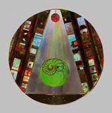 24' diameter disc