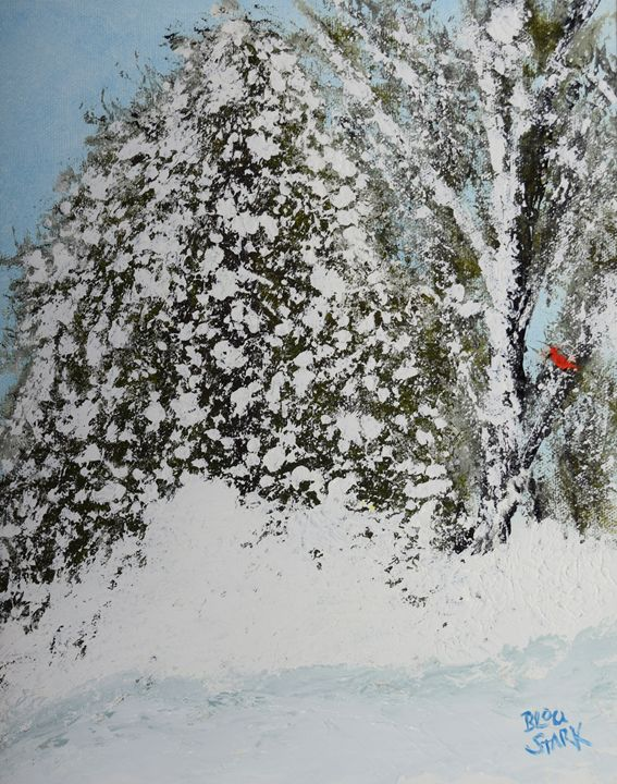 Cardinal In Snow - Barrie Stark Blou's Art